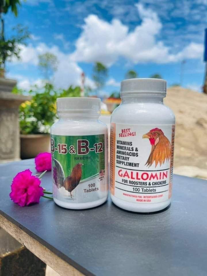 Vitamin b2-b15 cho gà
